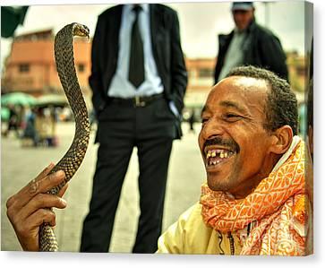 Yellow Cobra Canvas Print - The Snake Charmer  by Rob Hawkins