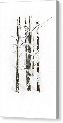 The Snow Just Won't Stop Canvas Print by Angela A Stanton