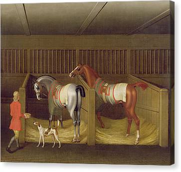 The Stables And Two Famous Running Horses Belonging To His Grace - The Duke Of Bolton Canvas Print by James Seymour