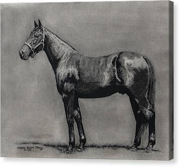 The Standardbred Canvas Print by Thomas Allen Pauly