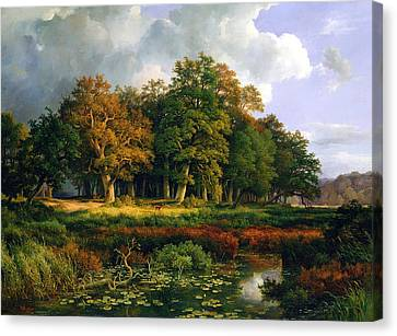 The Stangenmuhlengrund In Sachsenwald Canvas Print