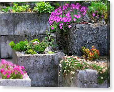The Stone Planters Canvas Print by Diana Angstadt