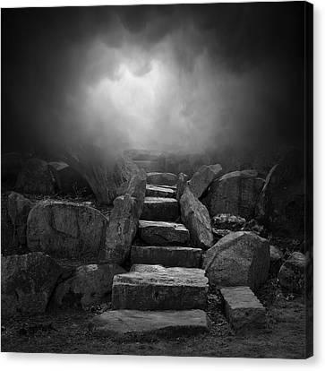 The Stone Steps I Canvas Print by Dave Gordon