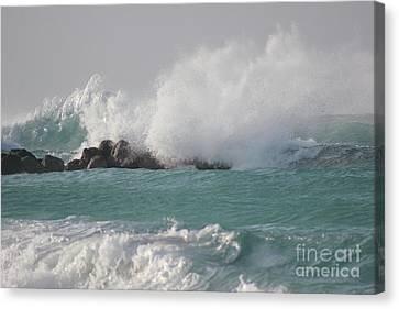 The Storm In My Head Canvas Print by Wilko Van de Kamp