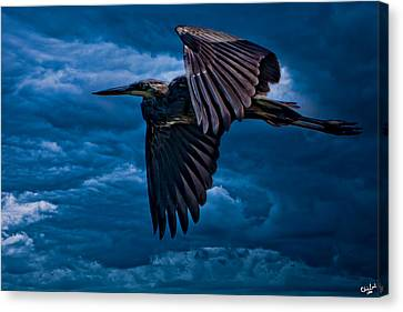 The Stormbringer Canvas Print by Chris Lord