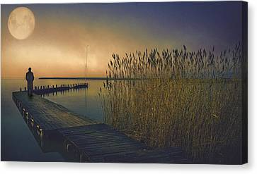 The Stranger Canvas Print by Brian Tarr