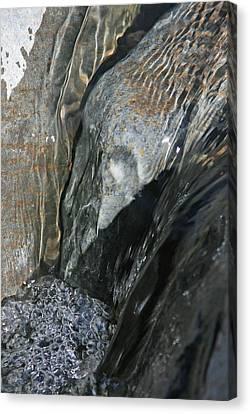 The Stream Scream Canvas Print by Gary Kaylor