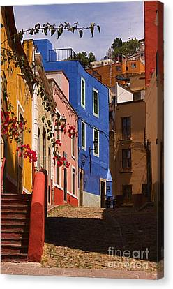 The Streets Of Guanajuato Canvas Print by Nicola Fiscarelli