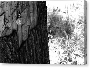 Canvas Print featuring the photograph The Stump Of Time by Don Youngclaus