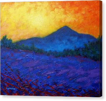 The Sugar Loaf - County Wicklow Canvas Print by John  Nolan