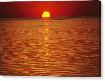 Cosmic And Atmospheric Phenomena Canvas Print - The Sun Sinks Into Pamlico Sound Seen by Stephen St. John