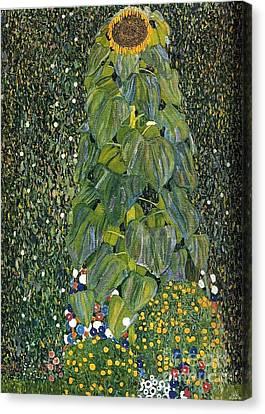 The Sunflower Canvas Print by Klimt