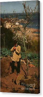 The Sunny South Canvas Print by Walter Langley