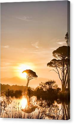 The Sunrise Canvas Print by Gabriela Insuratelu