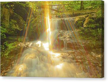 The Sunset  On Jones Falls Canvas Print by Glenn Vidal