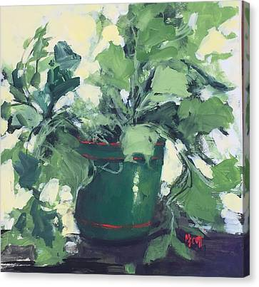 The Sweet Potato Plant Canvas Print