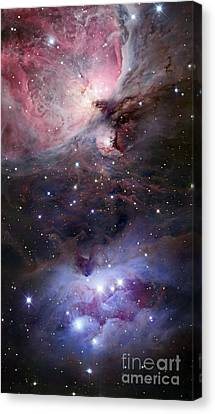 The Sword Of Orion Canvas Print by Robert Gendler