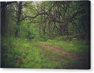 Canvas Print featuring the photograph The Taking Tree by Shane Holsclaw