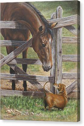 Bay Horse Canvas Print - The Tall And Short Of It by Kim Lockman