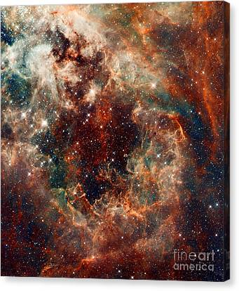 The Tarantula Nebula Canvas Print