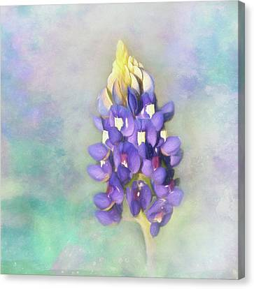 Canvas Print featuring the photograph The Texas State Flower The Bluebonnet by David and Carol Kelly