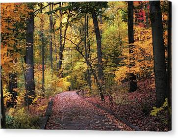 Canvas Print featuring the photograph The Thain Forest by Jessica Jenney