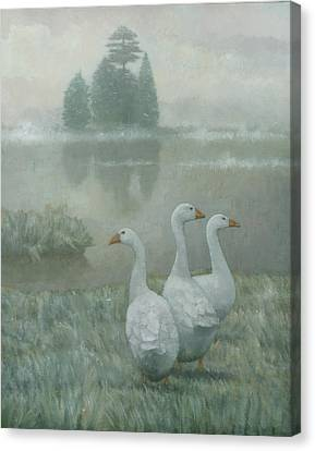 The Three Geese Canvas Print by Steve Mitchell