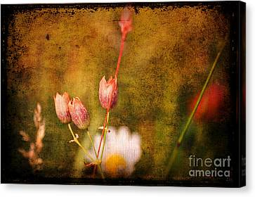 The Three Of Us Canvas Print by Silvia Ganora