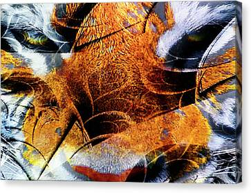 The Tiger And The Samurai Canvas Print