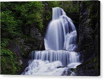 The Top Of Dingmans Falls Canvas Print by Rick Berk