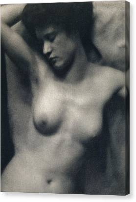 The Torso Canvas Print by White and Stieglitz