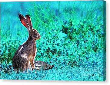 The Tortoise And The Hare . Cyan Canvas Print by Wingsdomain Art and Photography
