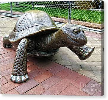 Park Canvas Print - The Tortoise by Lanjee Chee