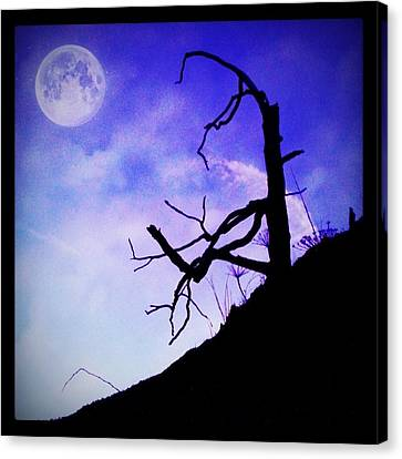 The Tree Canvas Print by Contemporary Art