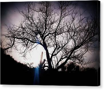 The Tree Of Wisdom Canvas Print by Nature Macabre Photography