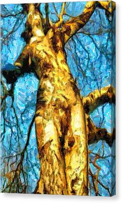 The Tree That Wanted To Be A Woman - Pa Canvas Print by Leonardo Digenio