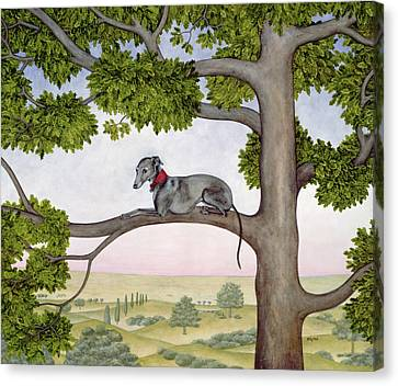 The Tree Whippet Canvas Print by Ditz