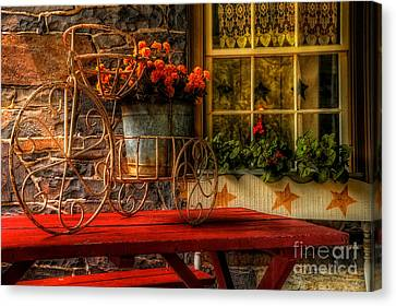 The Tricycle Canvas Print by Lois Bryan