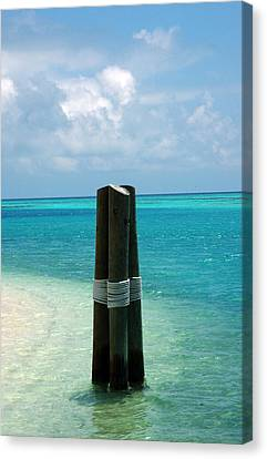 Turquois Water Canvas Print - The Triplets by Susanne Van Hulst