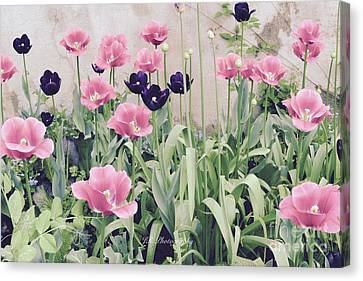 The Tulip Garden Canvas Print by Jeannie Rhode
