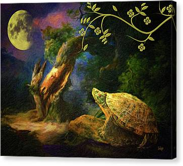 The Turtle Of The Moon Canvas Print