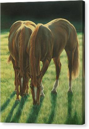 The Twins Canvas Print by Karen Coombes