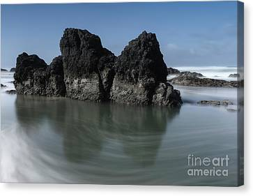 The Unique Rock On The Beach Canvas Print by Masako Metz