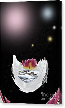 The Universe Canvas Print by Sharon Broucek