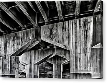 Canvas Print featuring the photograph The Urban Jungle by Brad Allen Fine Art