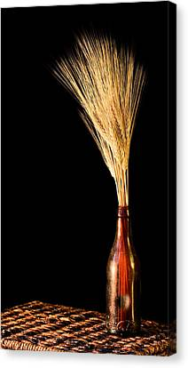 The Vase Canvas Print by JC Findley