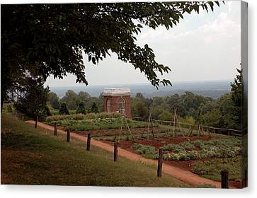 The Vegetable Garden At Monticello Canvas Print by LeeAnn McLaneGoetz McLaneGoetzStudioLLCcom