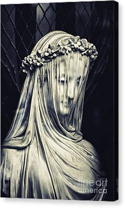 The Veiled Maiden Canvas Print by Tim Gainey