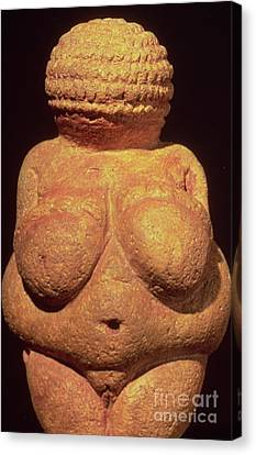 The Venus Of Willendorf Canvas Print by Unknown