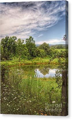 Canvas Print featuring the photograph The View Along Deerfield Trail by Kerri Farley
